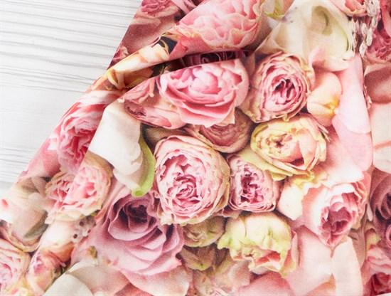 Футер 2х-нитка, розовые розы - фото 12042