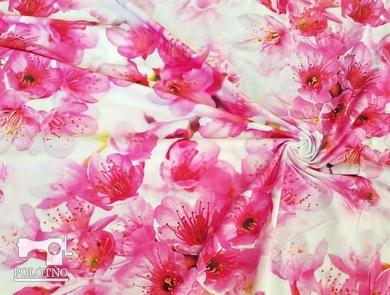 Кулирка Сакура - фото 5187