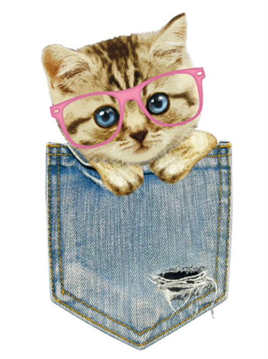 ТТ Кот в кармашке - фото 7199