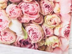 Футер 2х-нитка, розовые розы - фото 12044