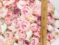 Кулирка розовые розы - фото 12048