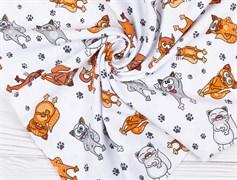 Кулирка кошки на белом - фото 12331