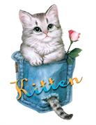 ТТ Кот в кармашке