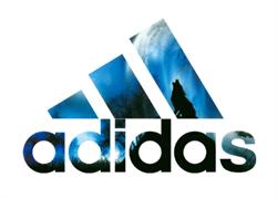 ТТ Спорт бренд большой A*D*I*D*A*S